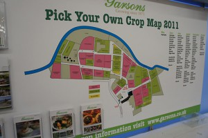 Pick Your Own(収穫) Map